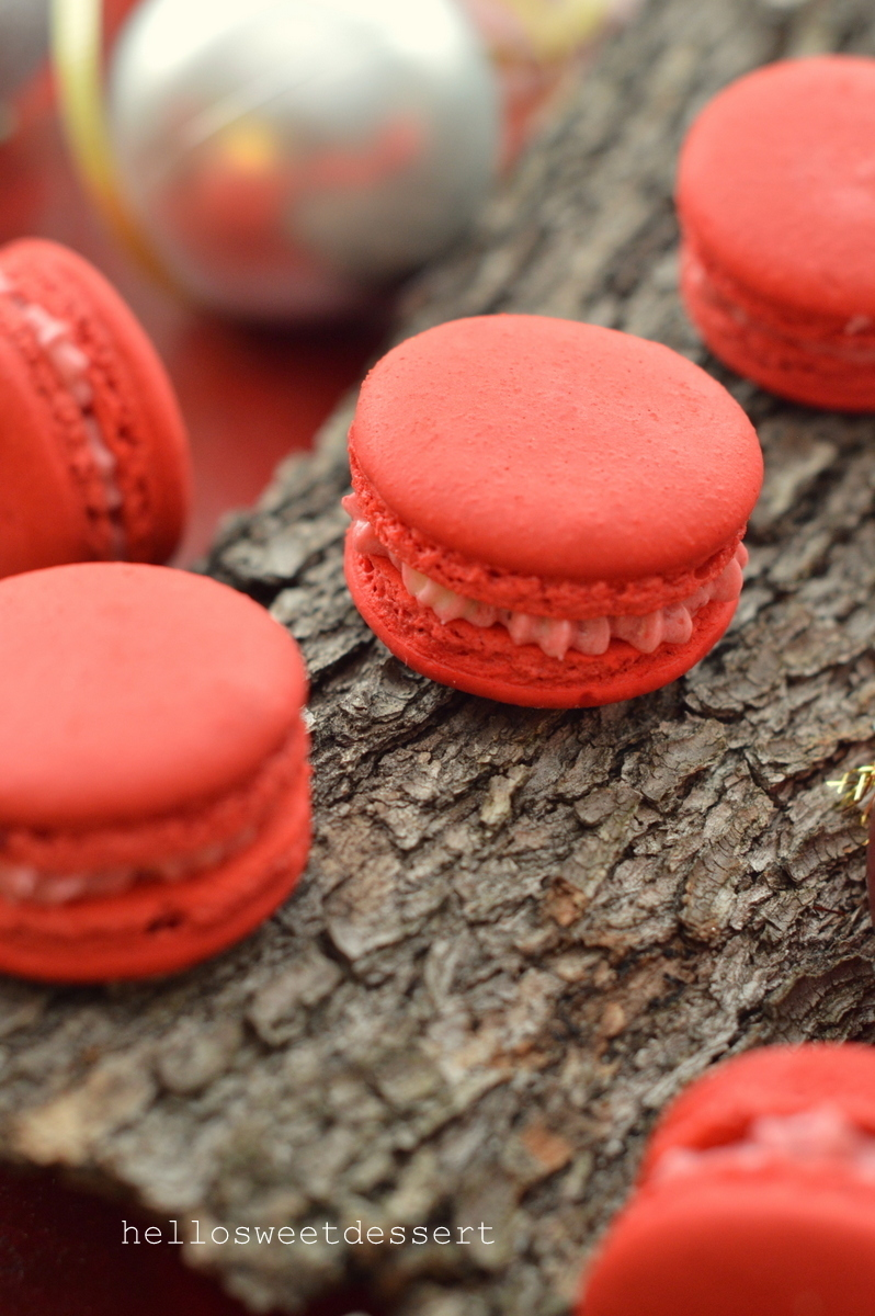 French Raspberry Macaron (Simple and Easy steps)