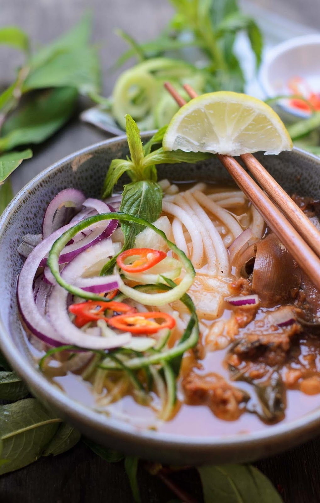 Rice Noodles in Asian Fish Soup / Asam Laksa