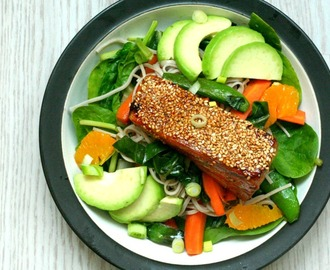 RECEPT: salade met teriyaki zalm en Surinaamse avocado - This Girl Can Cook