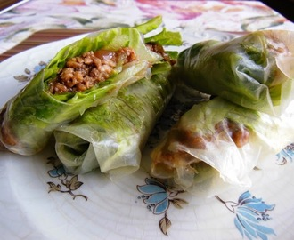 Fresh Spring Rolls with Minced Chicken Cooked in Hoisin Sauce