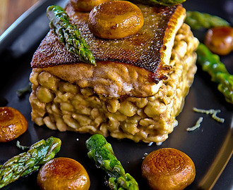 Fillet char with spatzle, mushroom and asparagus tips