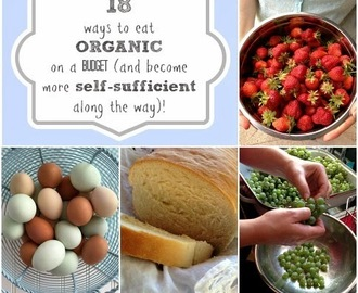 18 ways to eat ORGANIC on a BUDGET (and become more self-sufficient along the way)!