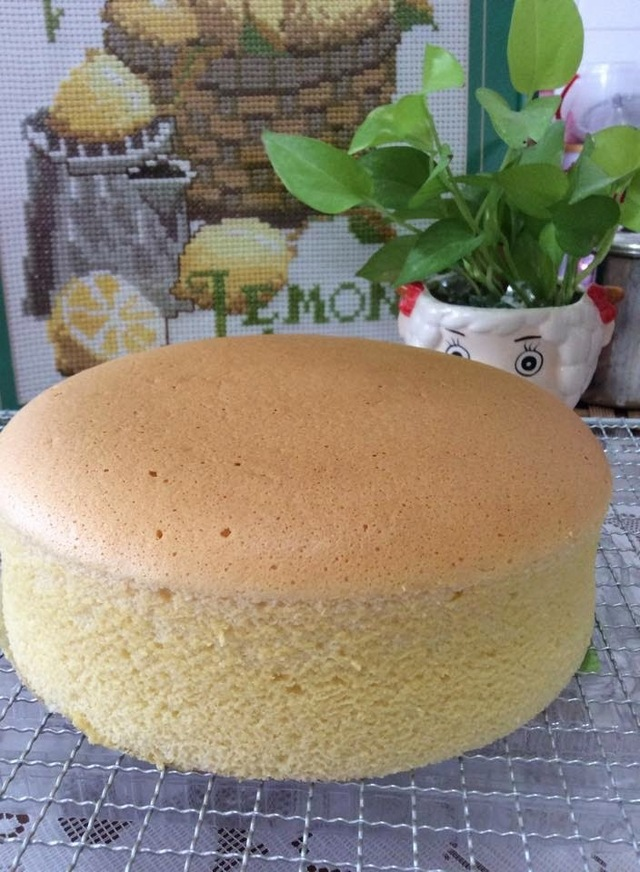 ~~ Condensed Milk Cotton Cake  炼奶棉花蛋糕 ~~