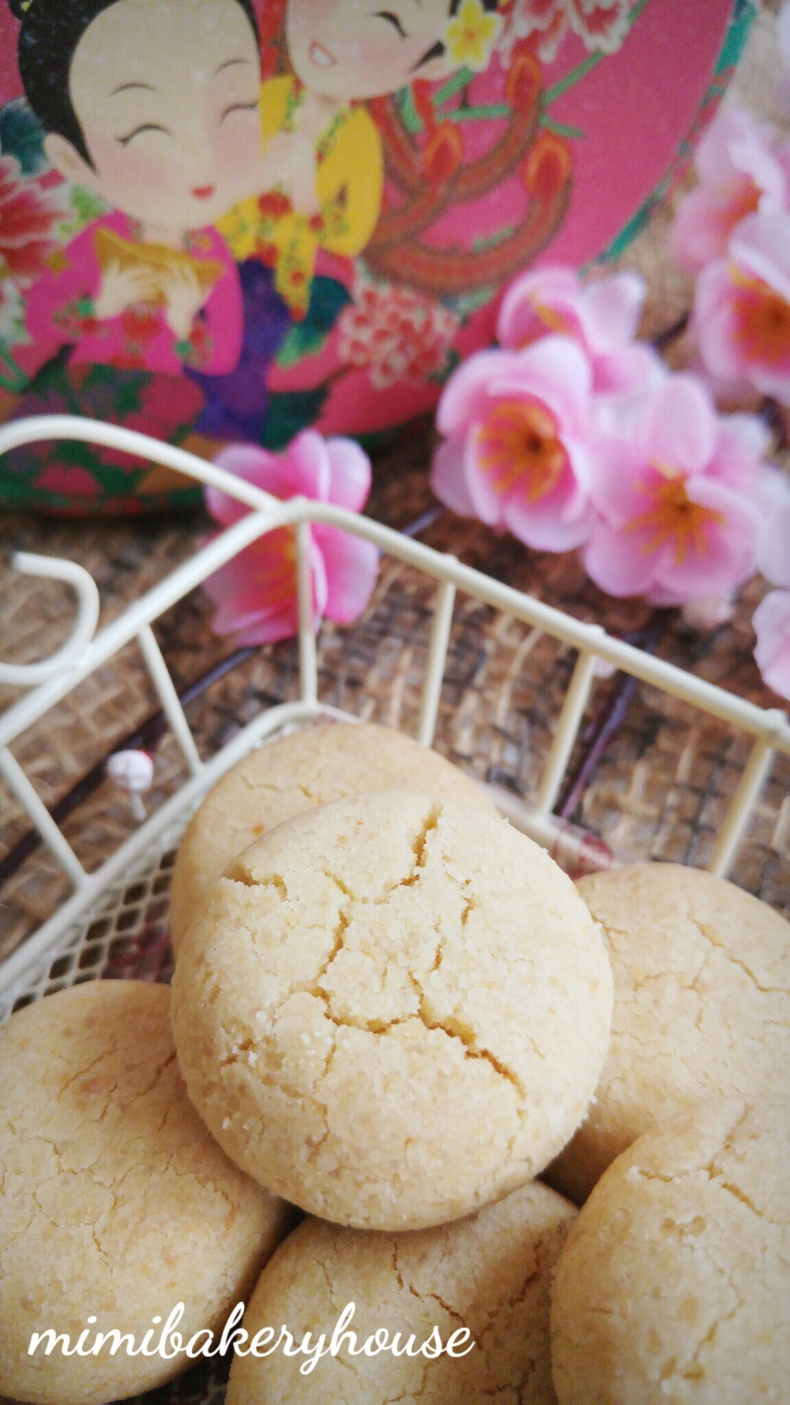 Peanut Cookies [20 Jan 2016]