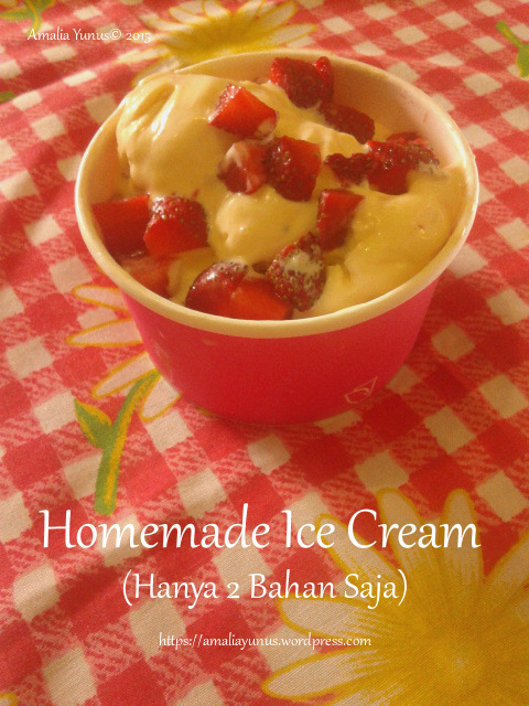 Homemade Ice Cream (Hanya 2 Bahan Saja)