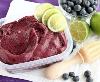 Instant Blueberry Frozen Yogurt