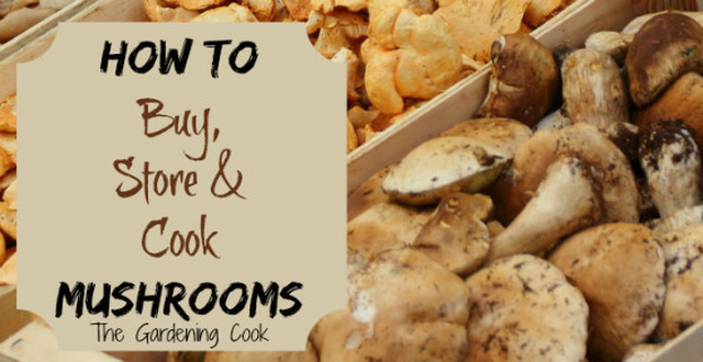 9 Tips for Cooking With Mushrooms