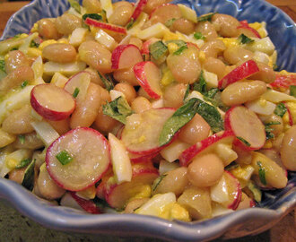 White Bean, Radish Salad; adding color to my life