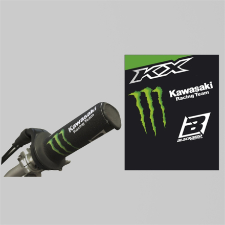 Blackbird KAWASAKI Grip protection Replica Kawasaki Racing Team 2017