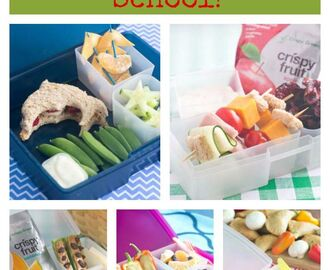 Lunch Box Recipes for Back to School!