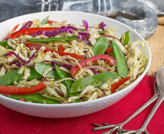 Asian Coleslaw #ProgressiveEats