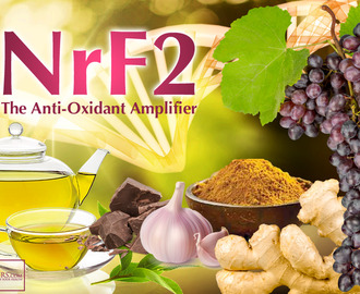 NrF2:  The Anti-Oxidant Amplifier