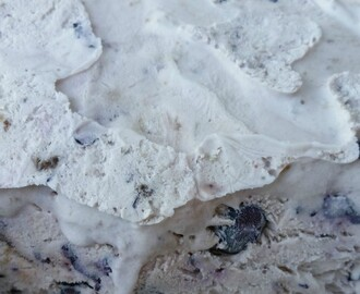 No-Churned Blueberry Ice Cream