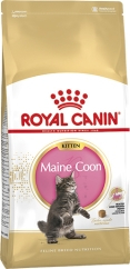 Kattmat Royal Canin Kitten Maine Coon, 10 kg