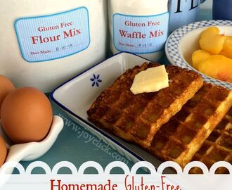 Homemade gluten-free WAFFLE MIX and FLOUR BLEND: The frugal farm girl's DIY ready-made mix series.