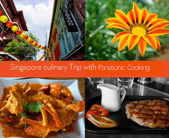 Singapore Culinary Trip with Panasonic Cooking Part 2