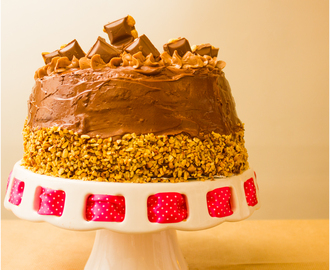 Chocolate Hazelnut Layer Cake with Nutella and Coconut Frosting!