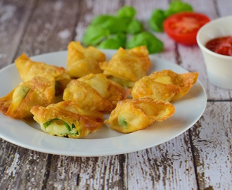 Mozzarella Basil Fried Wontons