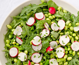Spring Salad with Lemon Chive Vinaigrette