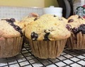 Banana Blueberry Muffins (Whole Wheat)