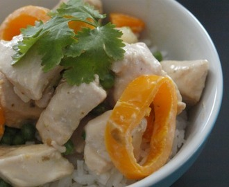 Kid Friendly Thai Chicken Curry