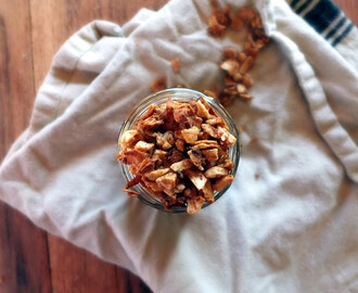 "Paleo Honey Bunches of ""N' Oats"""