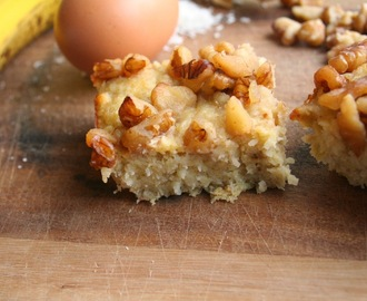 Coconut Breakfast Bars (Dairy, Gluten, Grain and Refined Sugar Free)