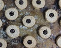 Buckwheat Linzer Cookies