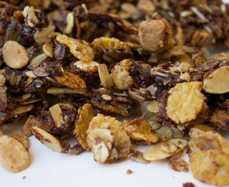 Chocolate Graham Granola