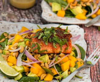 Seared Salmon and Spinach Salad With Ginger-Lime Vinaigrette