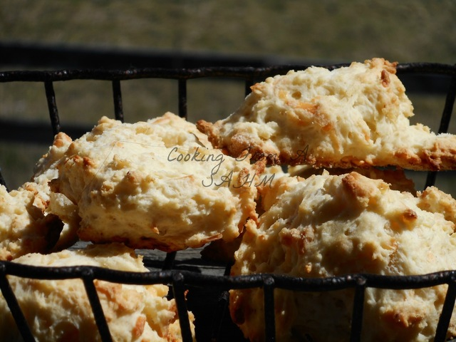 Buttermilk Garlic and Parm Drop Biscuits