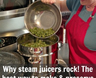 Why STEAM JUICERS rock! Discover the best way to make and preserve gallons of juice this summer.