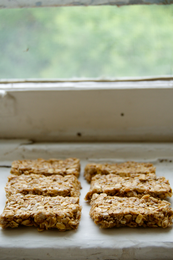Super Easy Oatmeal Cookie Granola Bars