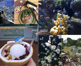 [Resort World Sentosa] S.E.A Aquarium, Skyride & Food