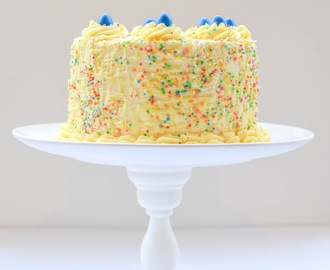 Because you are never too old for sprinkles: A confetti cake for my dad.