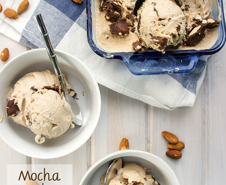 Mocha Fudge Almond Greek Frozen Yogurt
