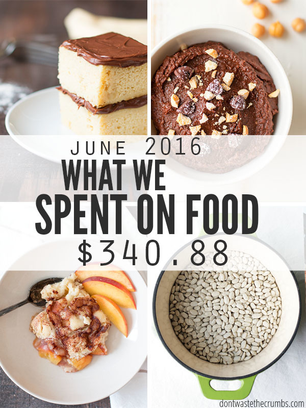 Living on a Food Budget: June 2016
