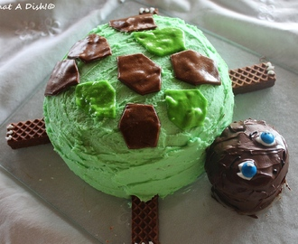 Turtle Birthday Cake!