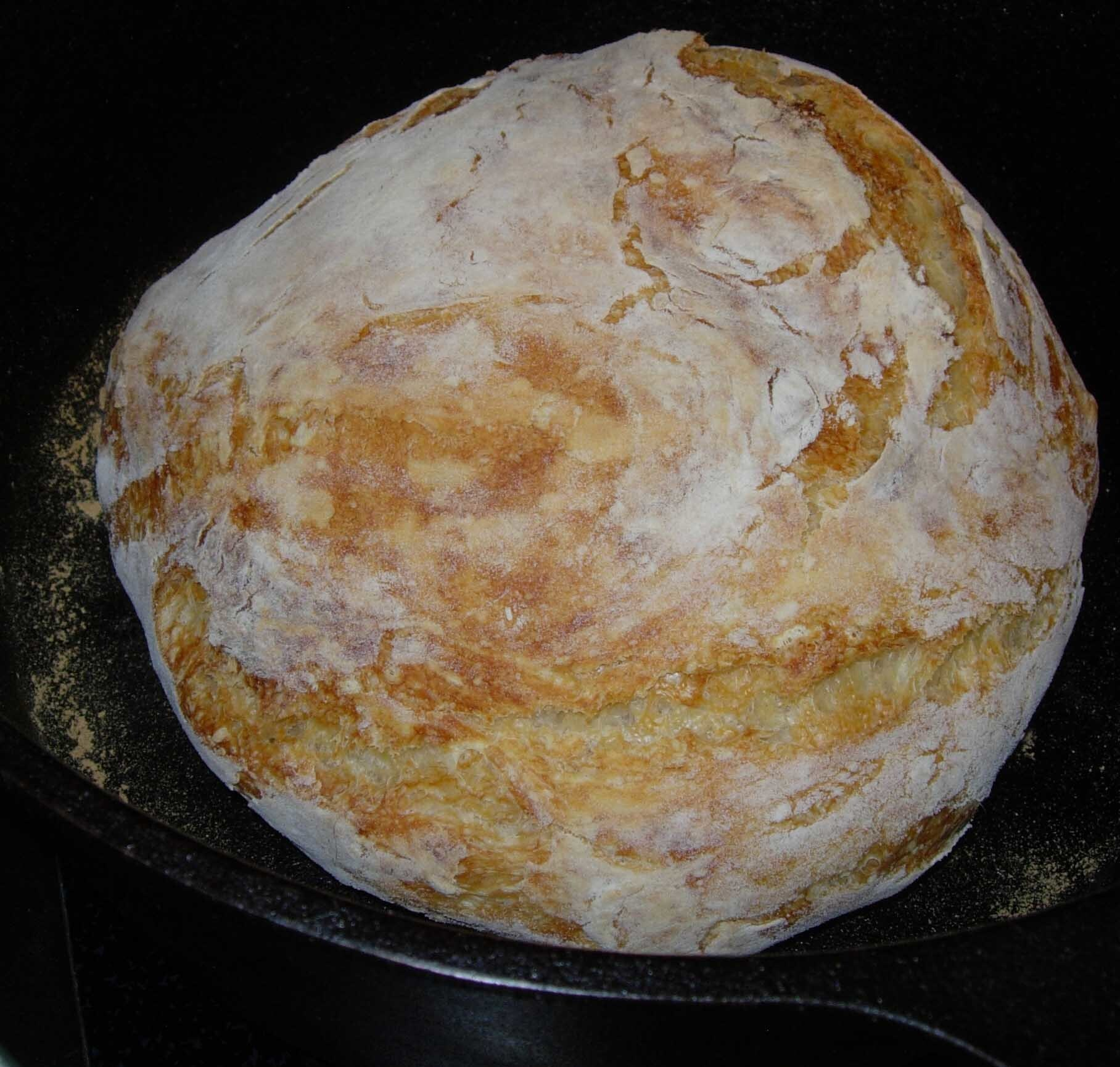 Bread Your 8 Year Old Can Make or 5 Minute, No Knead Artisan Bread