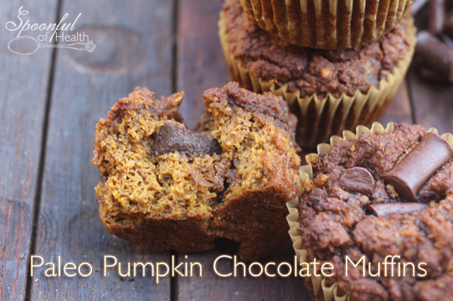 Chocolate Pumpkin Muffins {paleo, refined, dairy and gluten free}