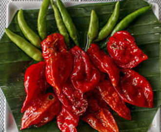 Pepper of the Week – Chili Pepper