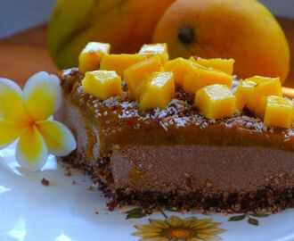 Mango, Chocolate and Lime Cheesecake: no bake/dairy free