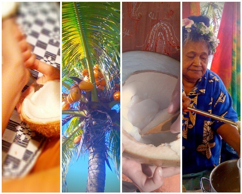 Coconut, the tree of life