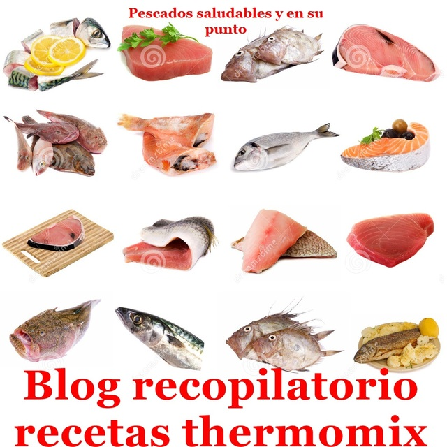 Pescado saludable y en su punto con thermomix (Recopilatorio)
