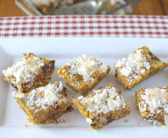 Coconut Pumpkin Breakfast Bars {Paleo, Vegan + GF}