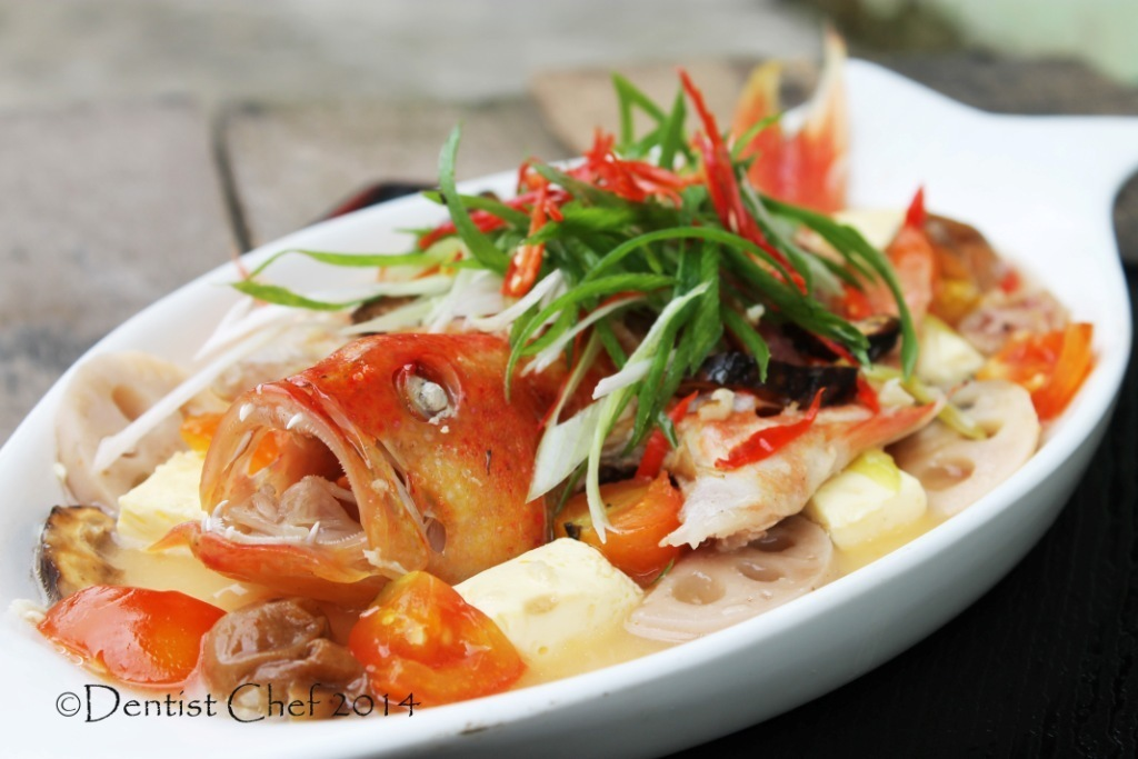 Teochew Style Steamed Fish Recipe with Seven Star Grouper