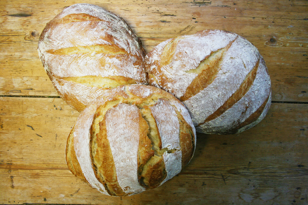 three white loaves - a flour baking report for Homepride Flour