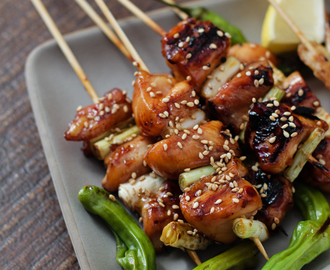 Japanese Grilled Chicken Skewers – Yakitori