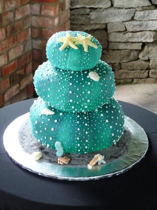 Kiwi Cake Decorator - Tracy Unsworth