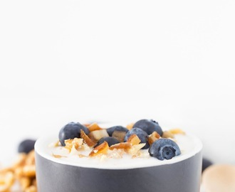 Yogur Vegano de Coco (2 Ingredientes)